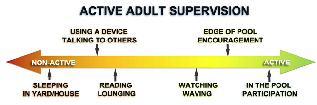 Active Adult Supervision